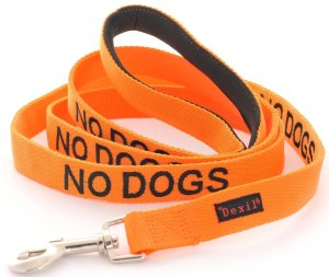 This is Vesper's leash.